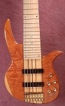 NT7 7 String- Burl Top-  Plek'd Maple Neck-Swamp Ash